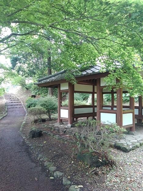烏ヶ森公園の丘の休憩所(6月20日)