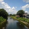 川の水面の映り込み(6月28日)