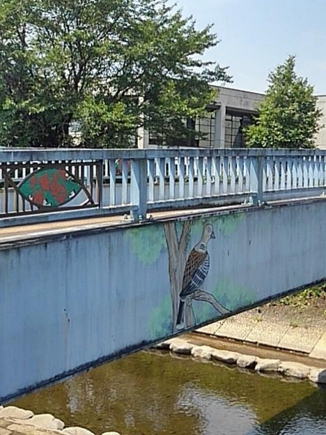 橋の鳥の絵(7月20日)