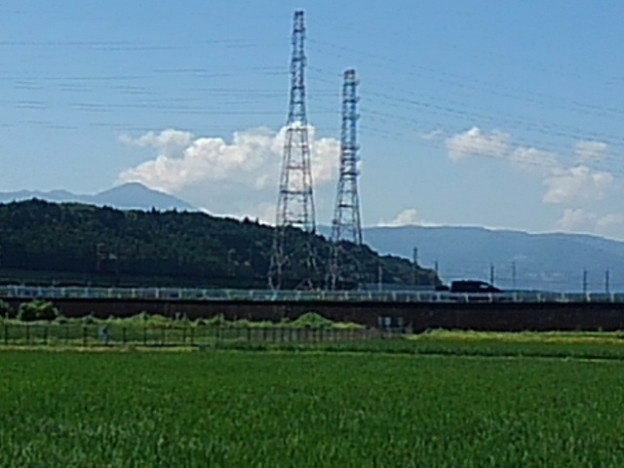 Photos: 鉄塔(7月17日)