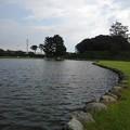 Photos: ゆうゆうパークの池の岸辺(7月24日)