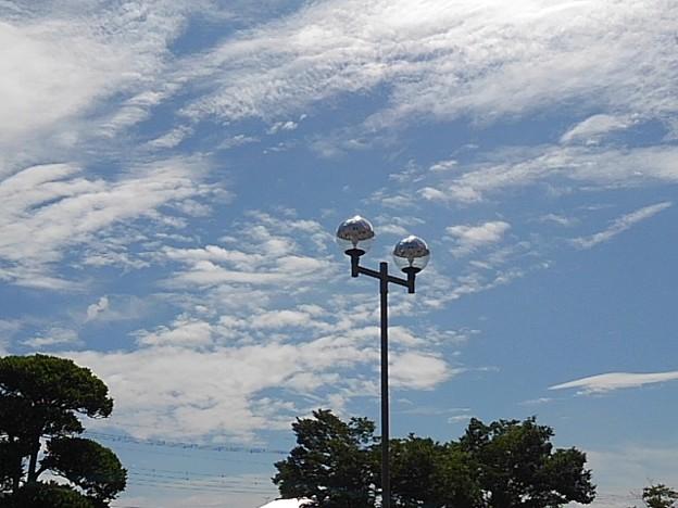 街灯と街路樹と雲(7月28日)