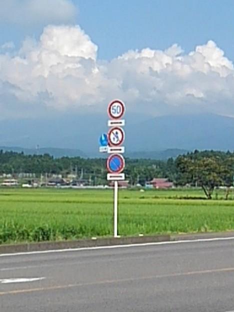 道路標識の奥の入道雲(8月5日)