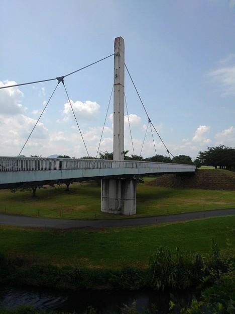 ゆうゆうパークの丘から見えたアーチな橋(7月24日)