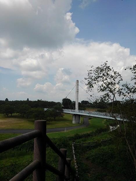 ゆうゆうパークの丘の上から見えた陸橋(7月24日)