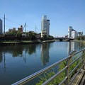 Photos: 宇都宮の川沿いの歩道(8月6日)