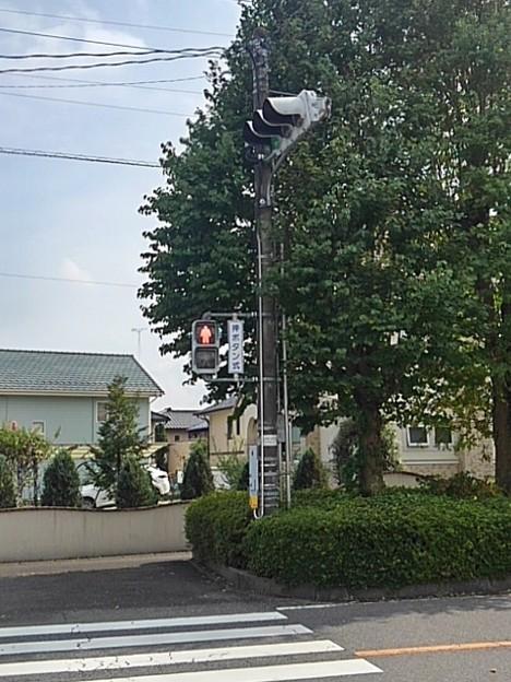 道の景色(8月22日)