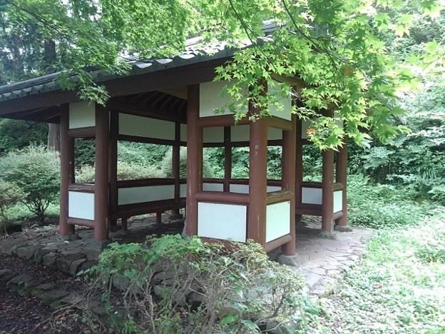 烏ヶ森公園の丘の休憩所(8月12日)