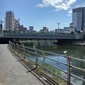 Photos: 宇都宮の街中の水辺の景色(8月6日)