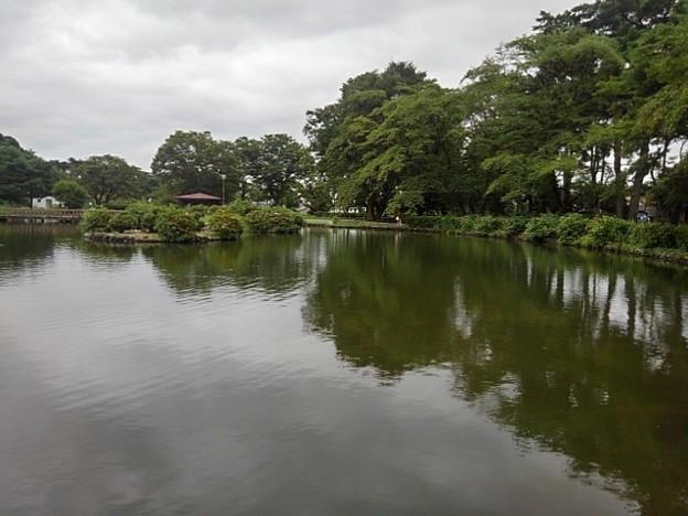 烏ヶ森公園の池の道から見えた景色(8月12日)