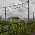 Photos: 線路が見える景色(8月29日)