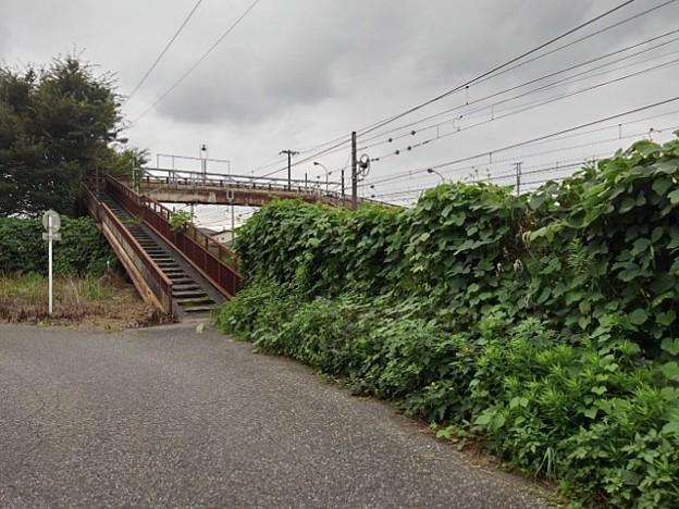 古びた歩道橋(8月29日)