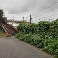 Photos: 古びた歩道橋(8月29日)