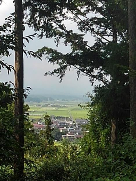 川崎城跡公園の丘の木々の隙間からの景色(8月28日)