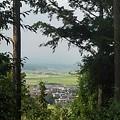 Photos: 川崎城跡公園の丘の木々の隙間からの景色(8月28日)