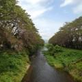 Photos: 橋の上から見えた川(8月27日)