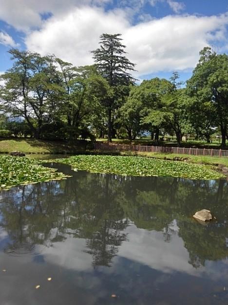 長峰公園の池に映り込んだ雲(8月10日)