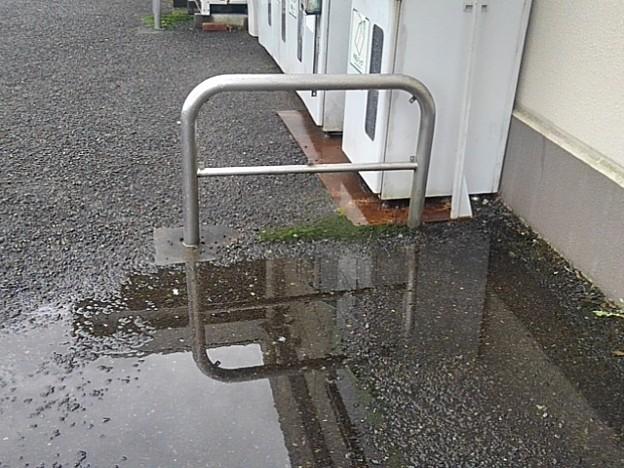 水溜まり(9月6日)
