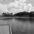 池の桟橋の景色のモノクロヴァージョン(7月24日)