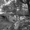 丘の陸橋の景色のモノクロヴァージョン(7月24日)
