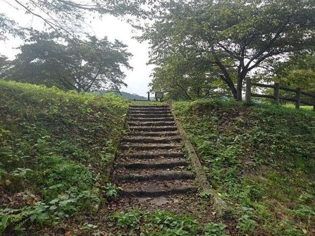 川崎城跡公園の石段(8月28日)