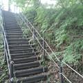 Photos: 川崎城跡公園の丘のモミジのある階段(8月28日)