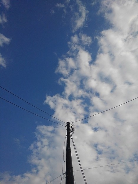 電柱と空(9月10日)