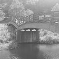 川崎城跡公園の橋・モノクロ(8月28日)