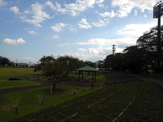 長峰公園の広場(9月10日)
