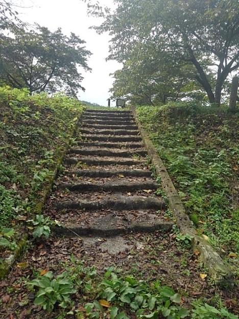 川崎城跡の丘の頂上へ続く階段(8月28日)