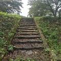 Photos: 川崎城跡の丘の頂上へ続く階段(8月28日)