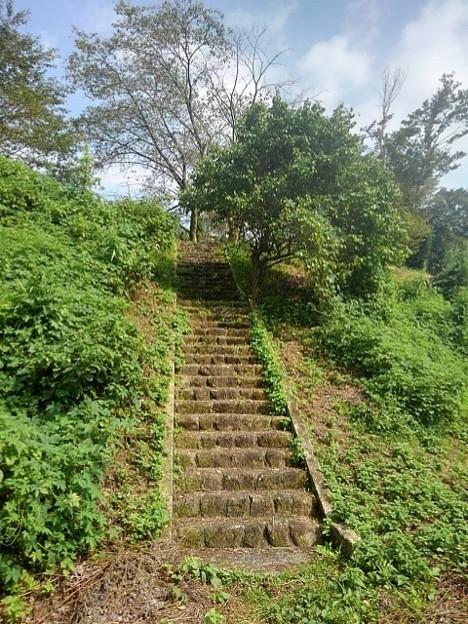 晴れた日の川崎城跡の丘の石段(8月28日)