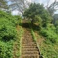 Photos: 晴れた日の川崎城跡の丘の石段(8月28日)