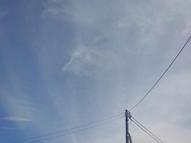 電柱の奥の空(9月13日)