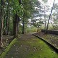 長峰公園の丘の歩道(9月10日)