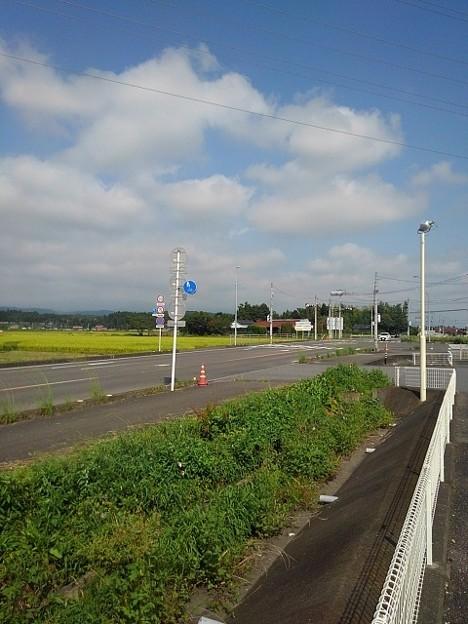 標識と田園(9月15日)