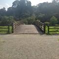 川崎城跡公園の正面から見た橋(8月28日)