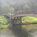川崎城跡公園の橋(8月28日)