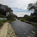 川原からの景色(9月13日)