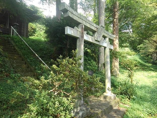 川崎城跡公園の丘の鳥居(8月28日)