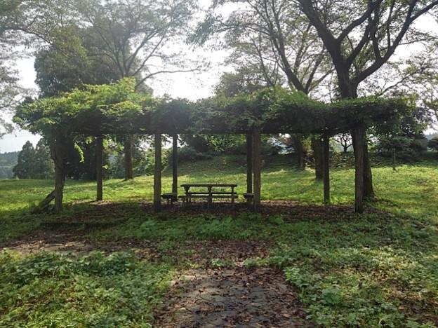 川崎城跡公園の丘のてっぺんの休憩所(8月28日)