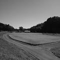 田園や川の景色・モノクロ(9月20日)