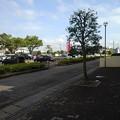 Photos: 歩道(9月11日)