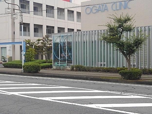 道路向こうのバス停と街路樹(9月12日)