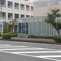 Photos: 道路向こうのバス停と街路樹(9月12日)
