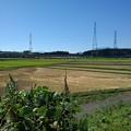 稲刈り後の水田(9月20日)