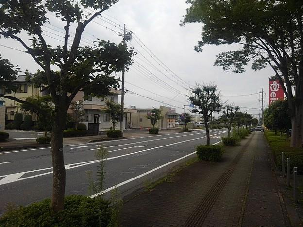 歩道(9月12日)
