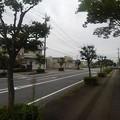 Photos: 歩道(9月12日)