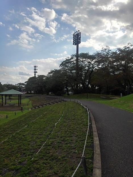 長峰公園の芝生広場の近くにある歩道(9月10日)