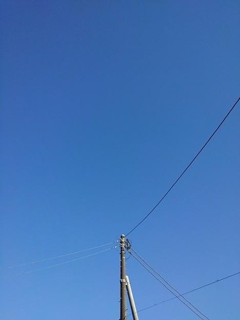 電柱の奥は雲ひとつない空(9月20日)